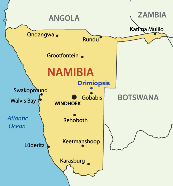 The resettlement camp of Drimiopsis is 45 kilometres north of Gobabis.