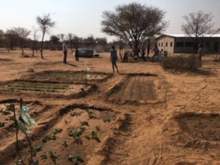 Now with water on the land, the development of a garden is underway. In another area not shown, Zuma is developing a garden with indigenous plants. His wages are provided by CSNS donors.