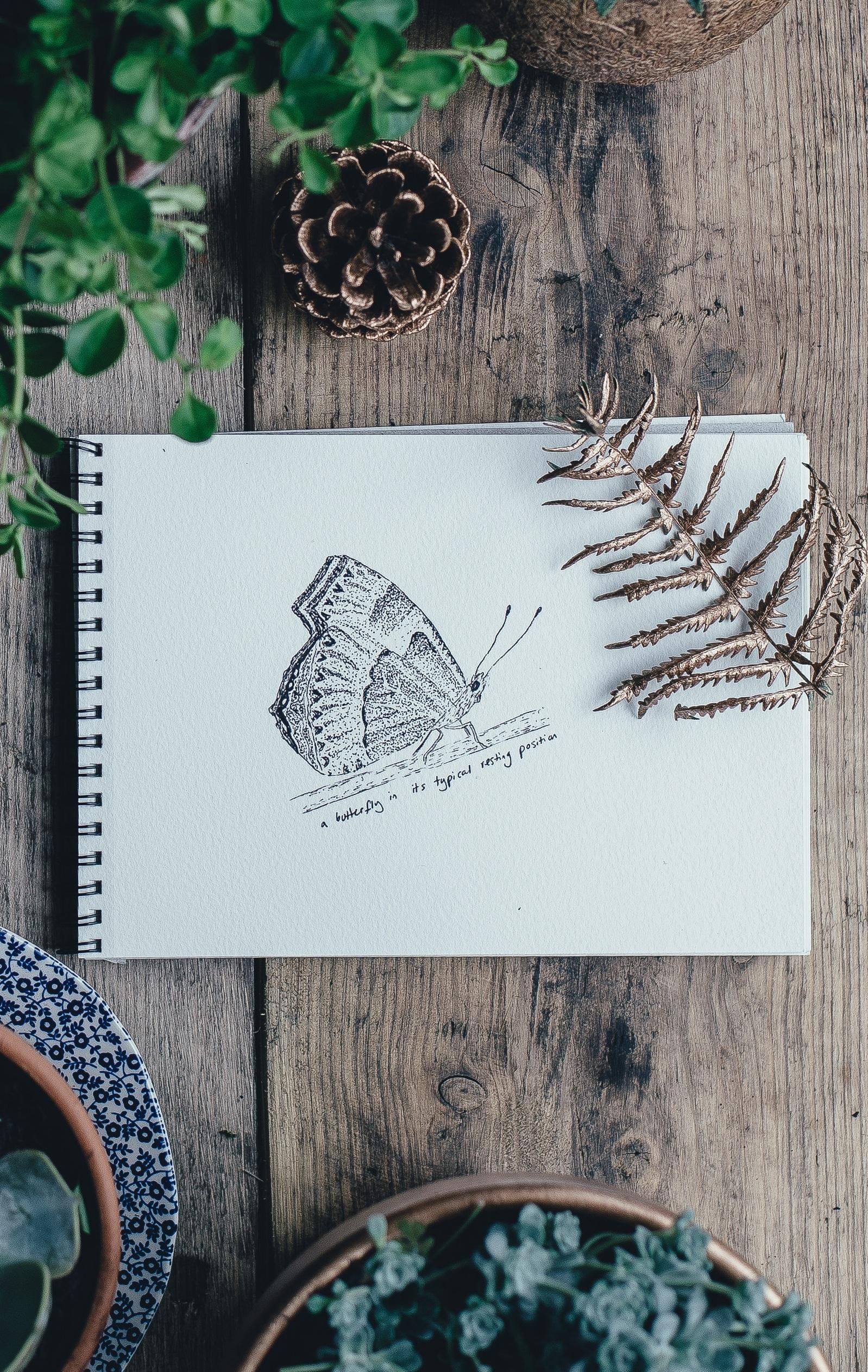 sketch_artist