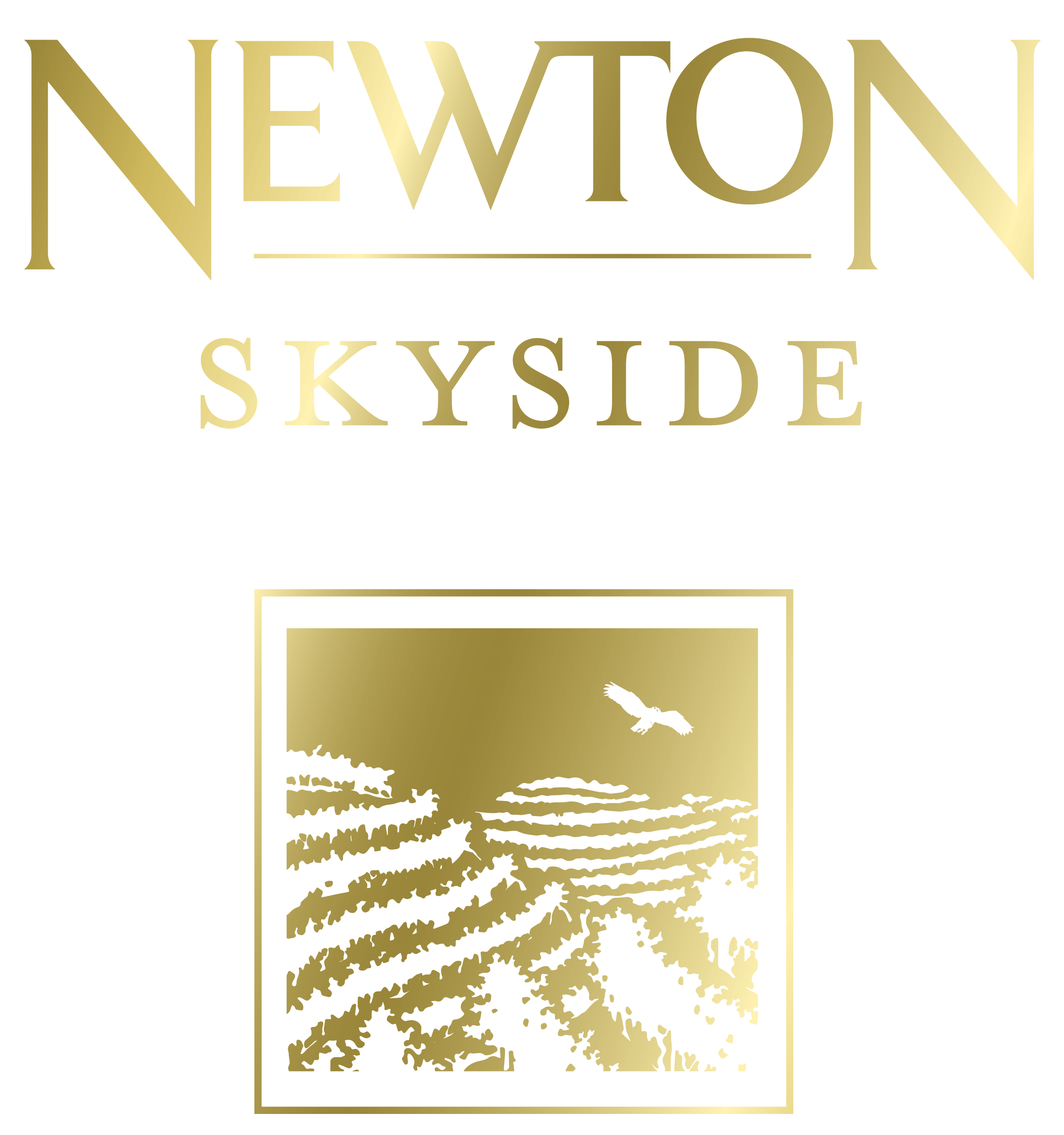 Newton-Skyside1-Gold-HD.jpg