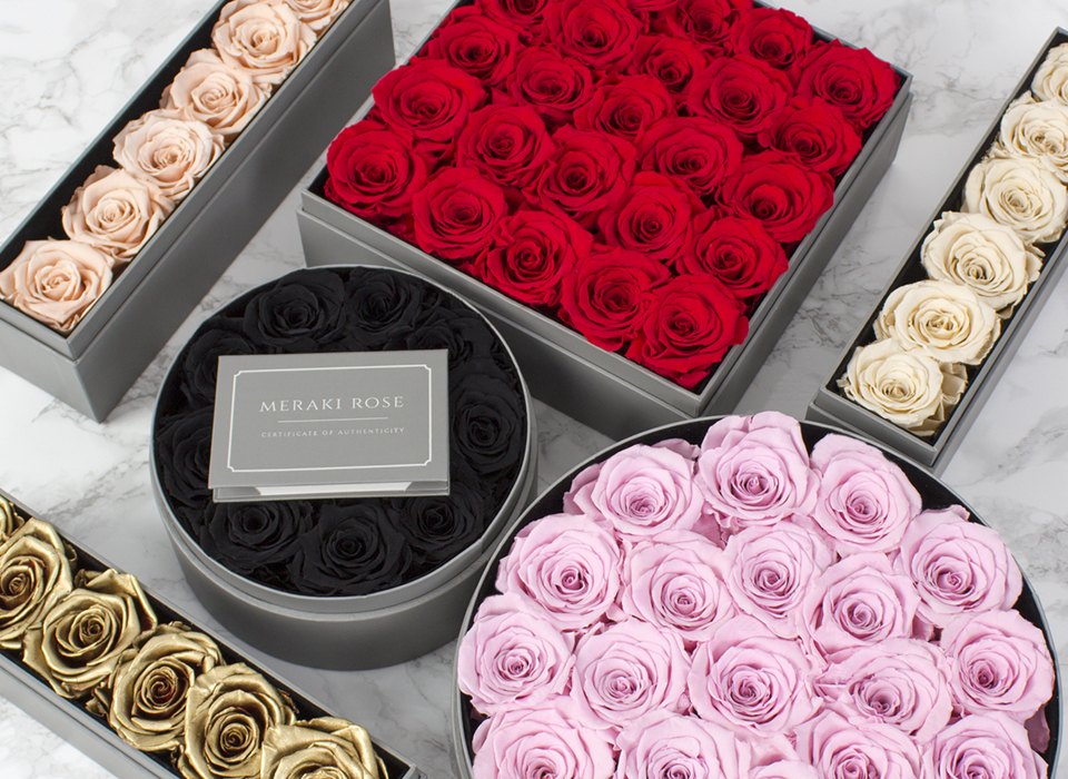 premium preserved roses - Meraki Roses are 100% natural Ecuadorian roses that have been preserved to last years without the need for water or sunlight.Immaculately wrapped in our signature gift box: A gift they will fall in love with at first sight.