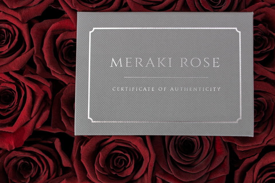 Preserved to Last - Fresh Ecuadorian roses were treated with special ingredients such as glycerin to preserve the rose's perfect shape and color. Meraki Roses lasts anywhere from one to several years with proper care.