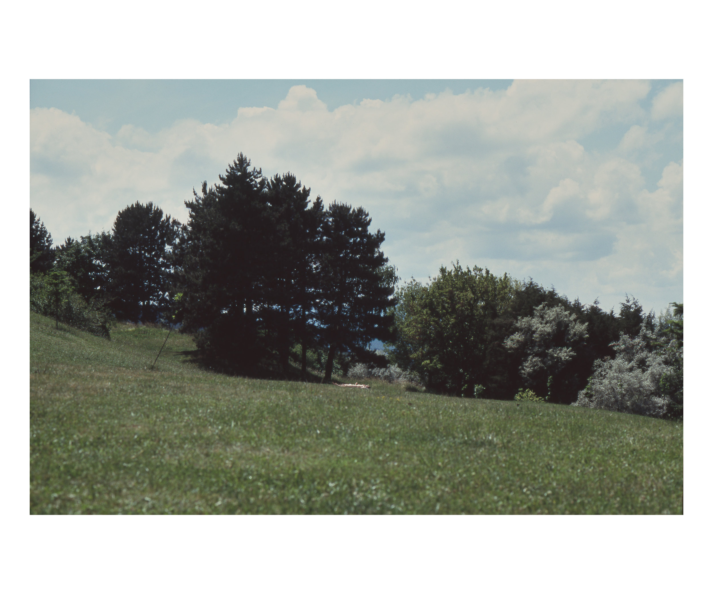 Ovidiu Gordan Photography color slides 2009_07.jpg