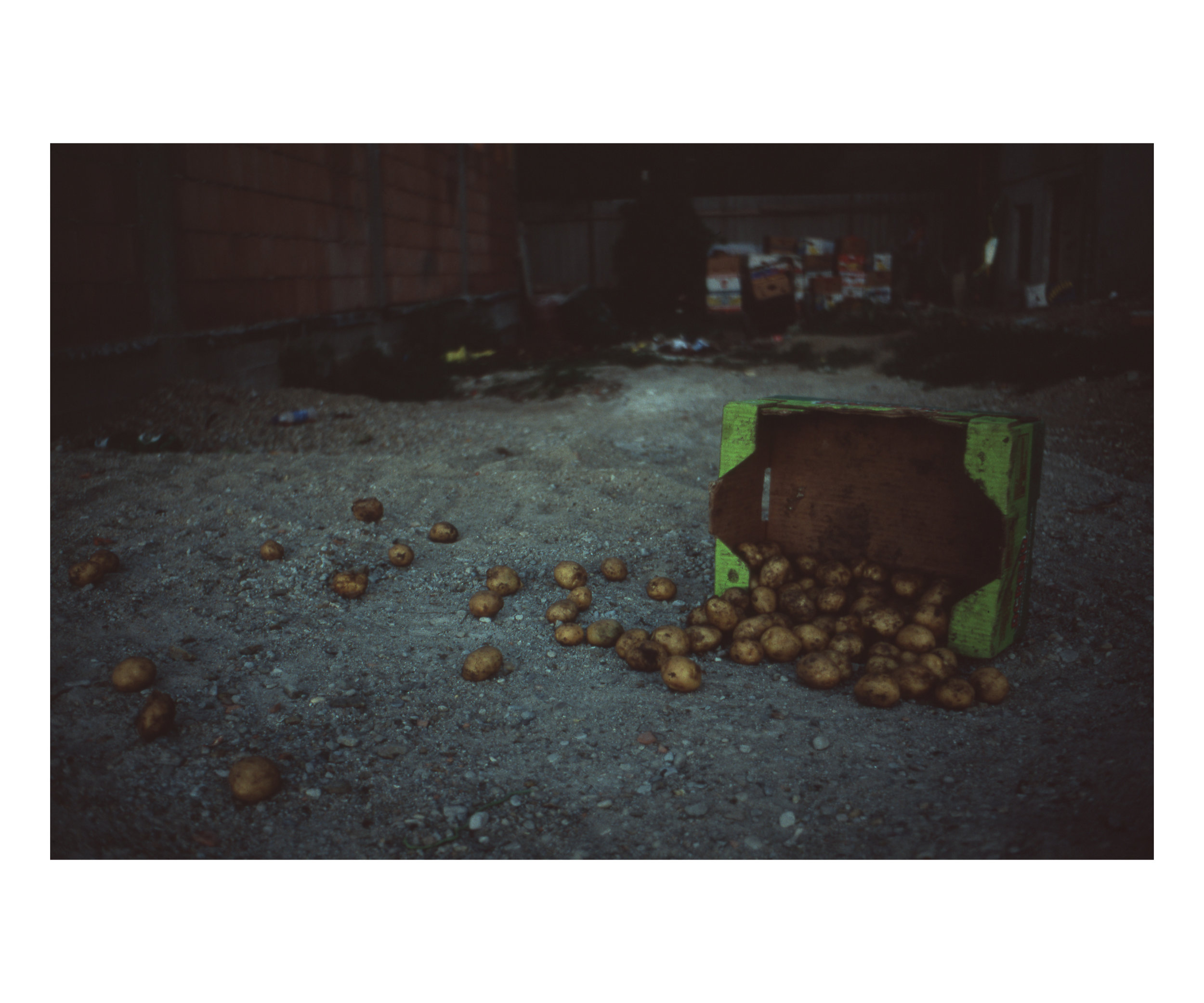 Ovidiu Gordan Photography color slides 2009_12.jpg