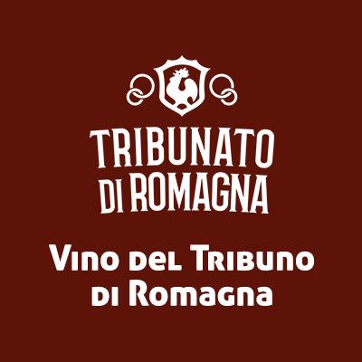 """- 2015Vino del TribunoDal 1967, il """"Concorso Vino del Tribuno"""" per far conoscere la migliore produzione enologica della Romagna ai consumatori e agli operatori, presentare al pubblico i vini più caratteristici, premiare e stimolare le aziende al continuo miglioramento qualitativo dei loro prodotti. Sangiovese Superiore Rubbio."""