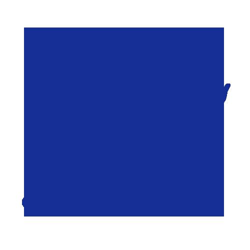 BZR logo