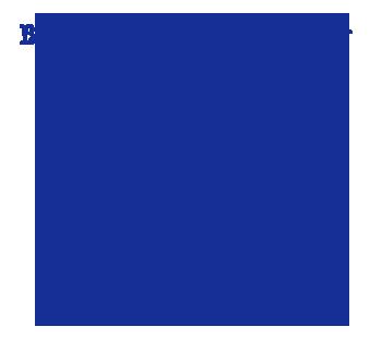 Banzarbar Logo Triangle