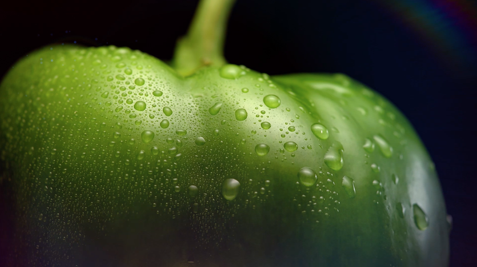 Taylor Vieger Macro Food Photography 2019 Peppers.png