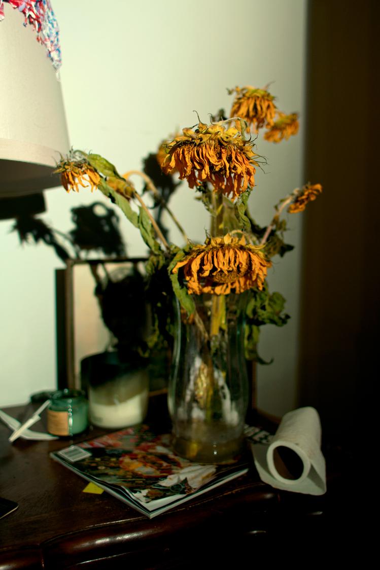 dead-sunflowers-by-ransom-ashley-.jpg