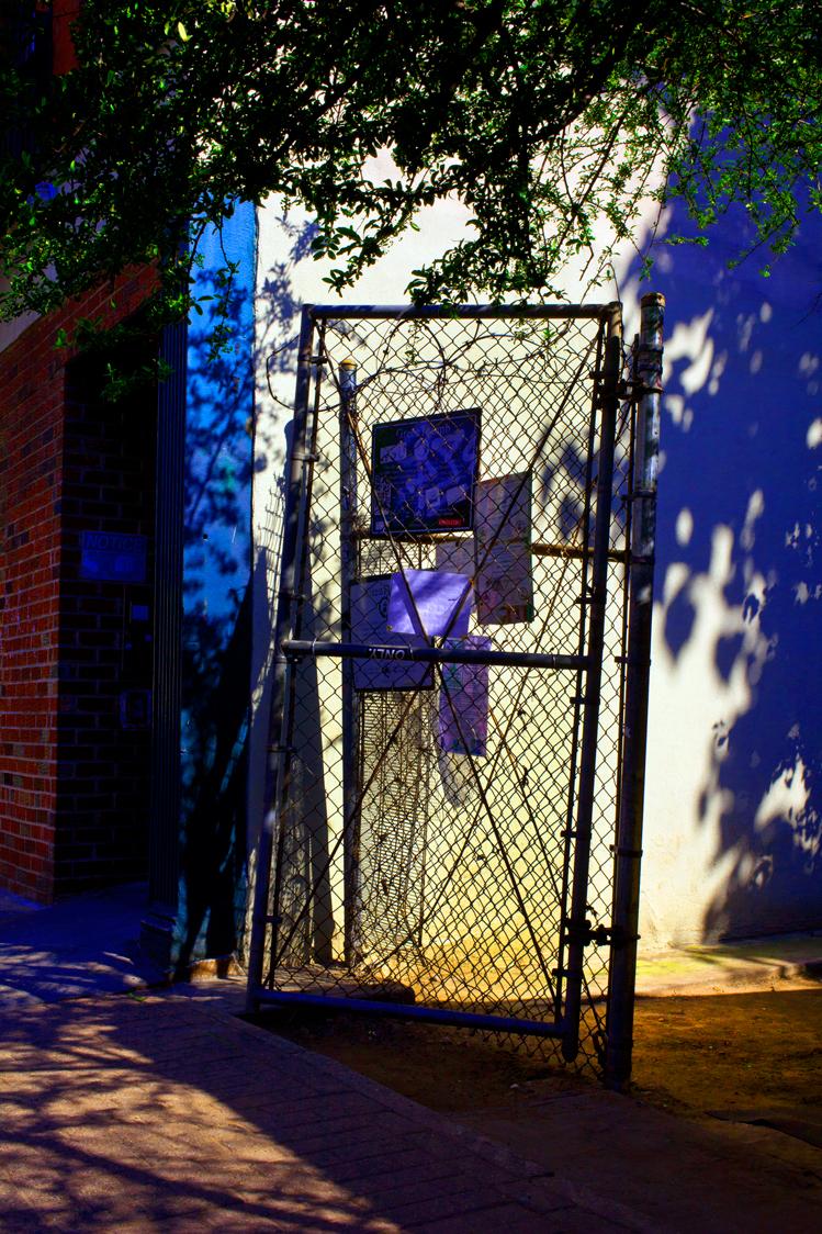 fence-by-ransom-ashley-.jpg