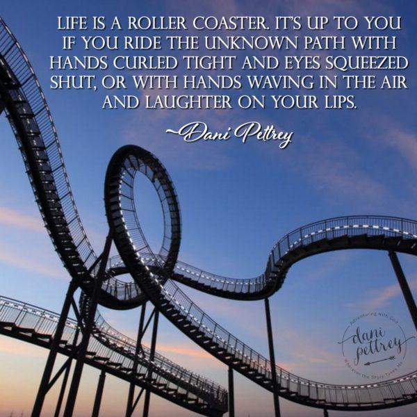 Rollercoaster-600x600.jpg