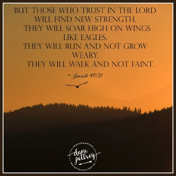Soar On Wings.png