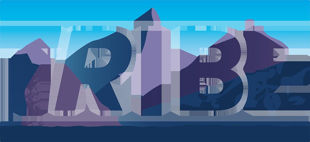 TRIBE logo 500px H.png