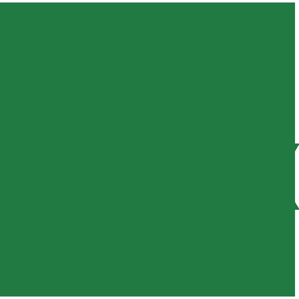 Non-Alcoholic Brands