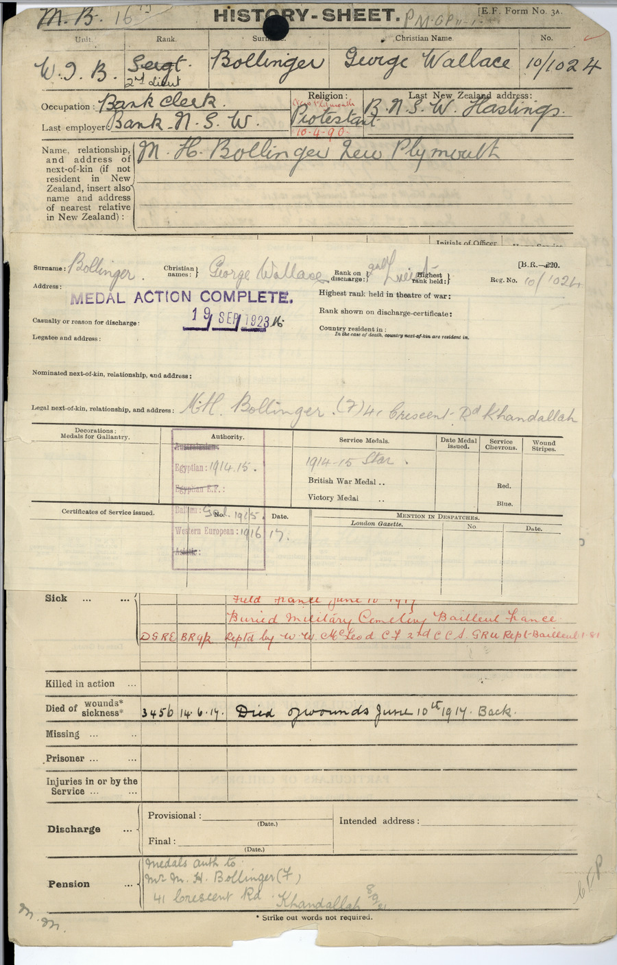 Bollinger GW History Sheet