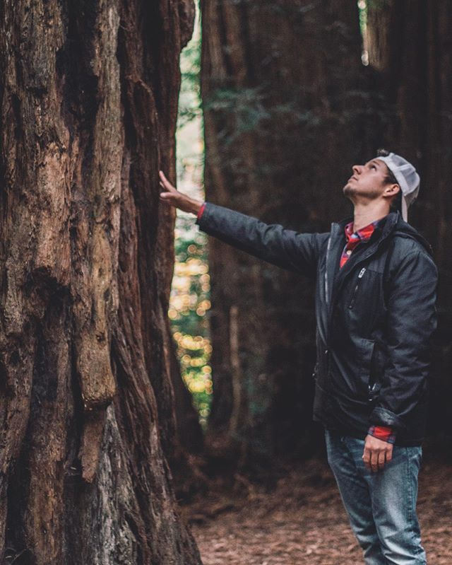 Stand strong and stay confident, but be humble — a lesson from the Redwoods 🌲. I've learned many life lessons this past year, and most of them have been through nature and getting to see different parts of the world and country. Last year around this time, I had just moved out of NYC and was about to head out to Oregon with my partner in crime and pup. It's been an incredible year for self growth and exploration, and doing things a bit untraditionally definitely has its pros and cons, but damn I feel alive and that's a great feeling 🥂🙏🏽. . I'm about a week out from Nikka's Perfect Serve bartending competition and have been mentally preparing for that. Another exciting life experience to be had, and I can't wait to meet some new industry folk and make some killer cocktails for my discerning guests (aka judges haha)🍹🥂. Cheers & happy Saturday!