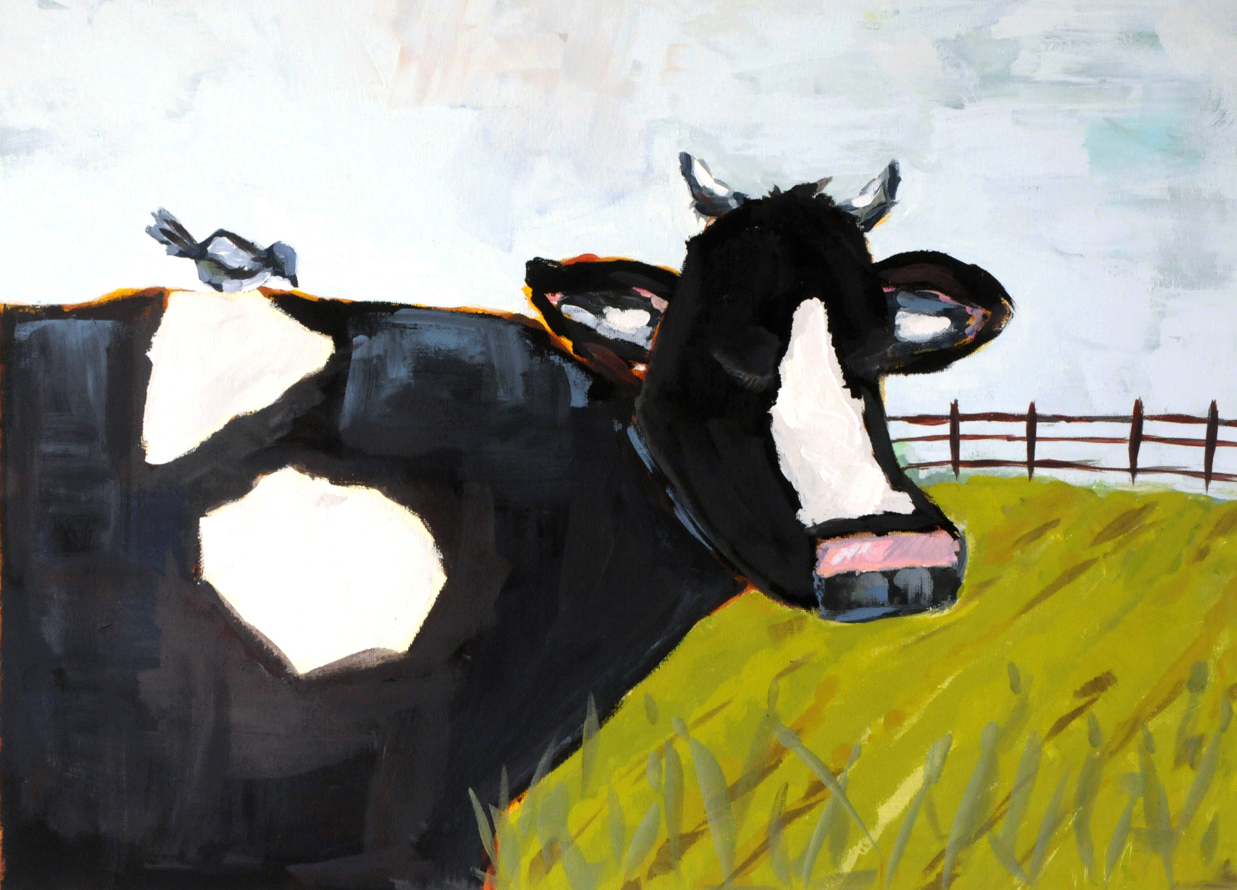 Cow & Magpie