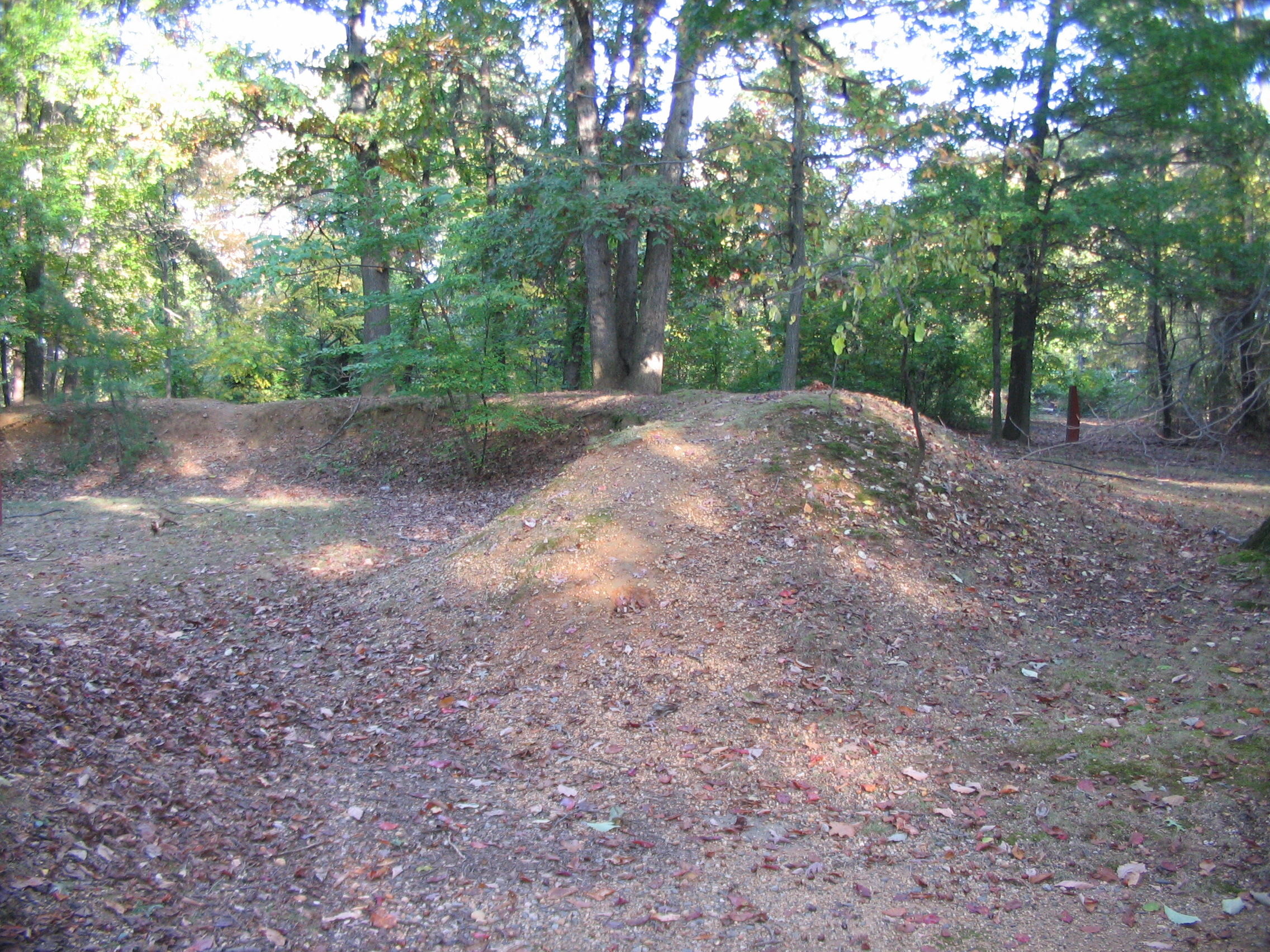 Remnants of Fortifications on Freedom Hill