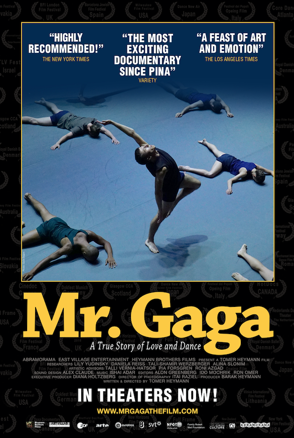 Mr. Gaga - poster.png
