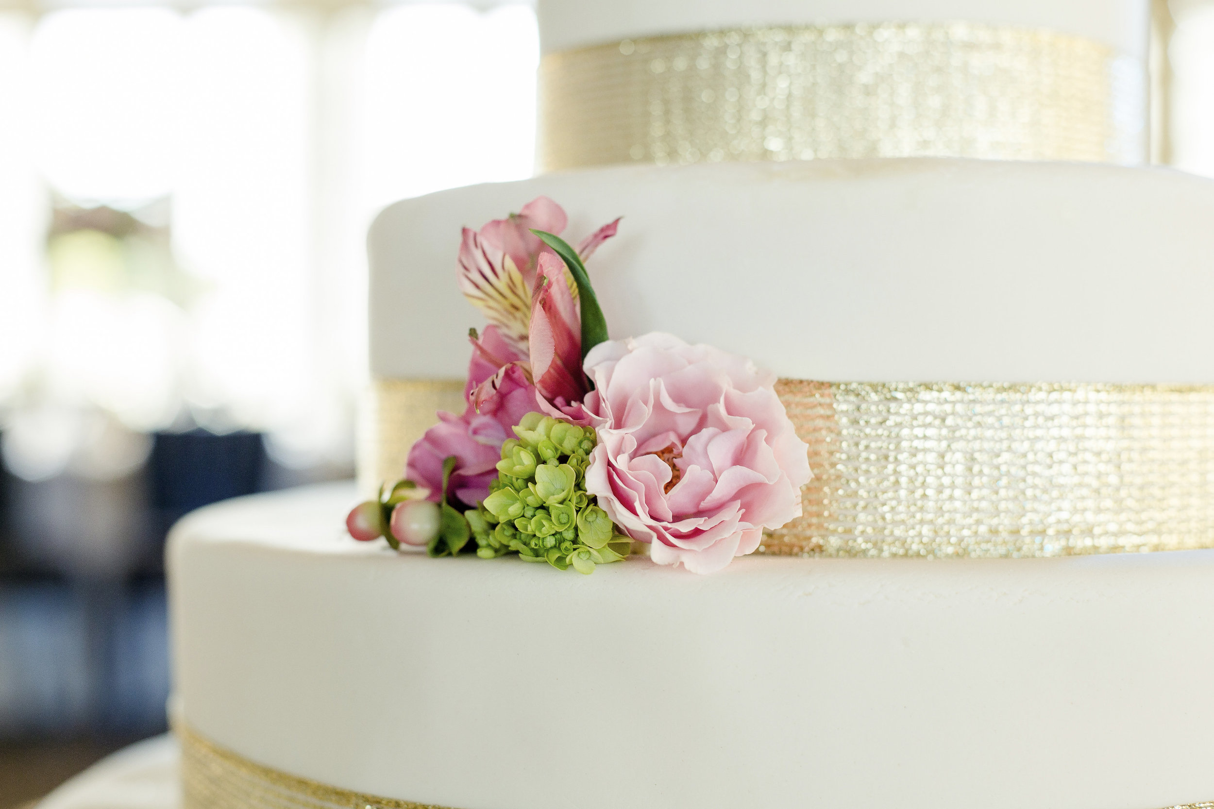 Services Banner - Freeland Photography