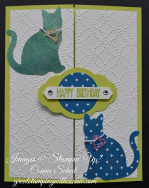 Do you know someone with a December birthday? They don't want a Christmas birthday card!! Here is a fancy fold that is sure to help them celebrate their own special day. It's hard to see in the photo, but I painted the cats with Wink of Stella for some extra Birthday Bling!
