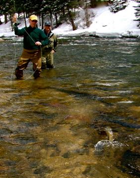 Walk Wade fishing trips