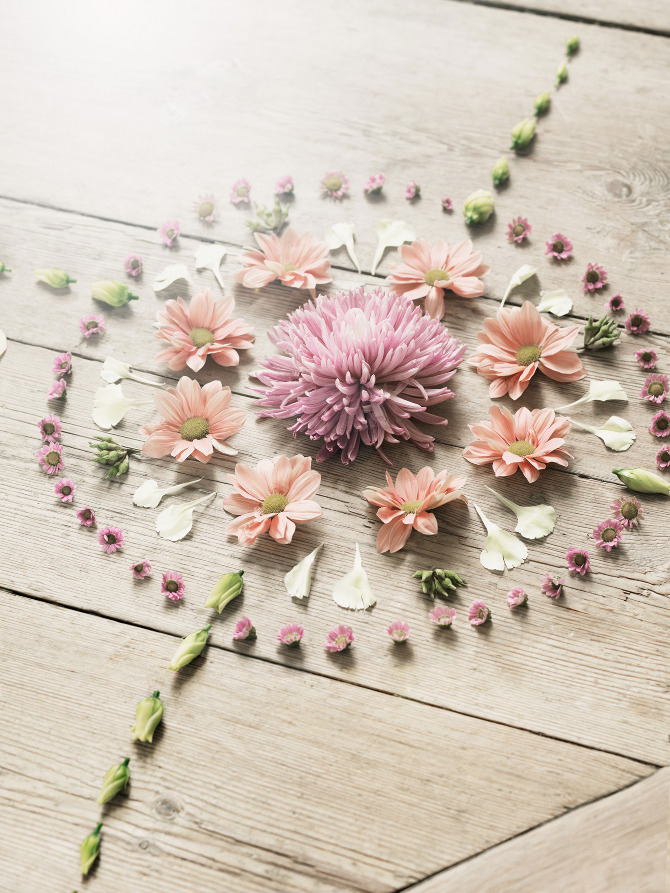 79ideas-fresh-flowers-petra-bindel.png