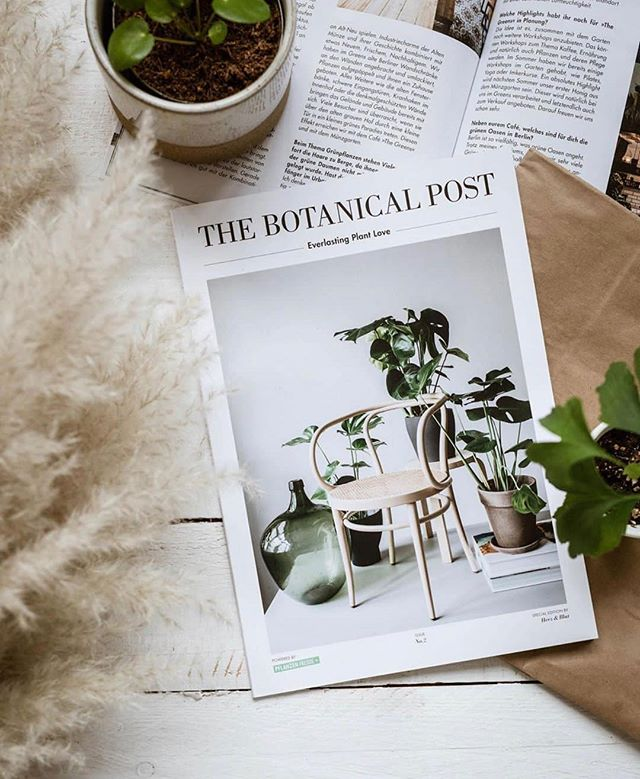 The Botanical Post #2 📸 by @sister_mag