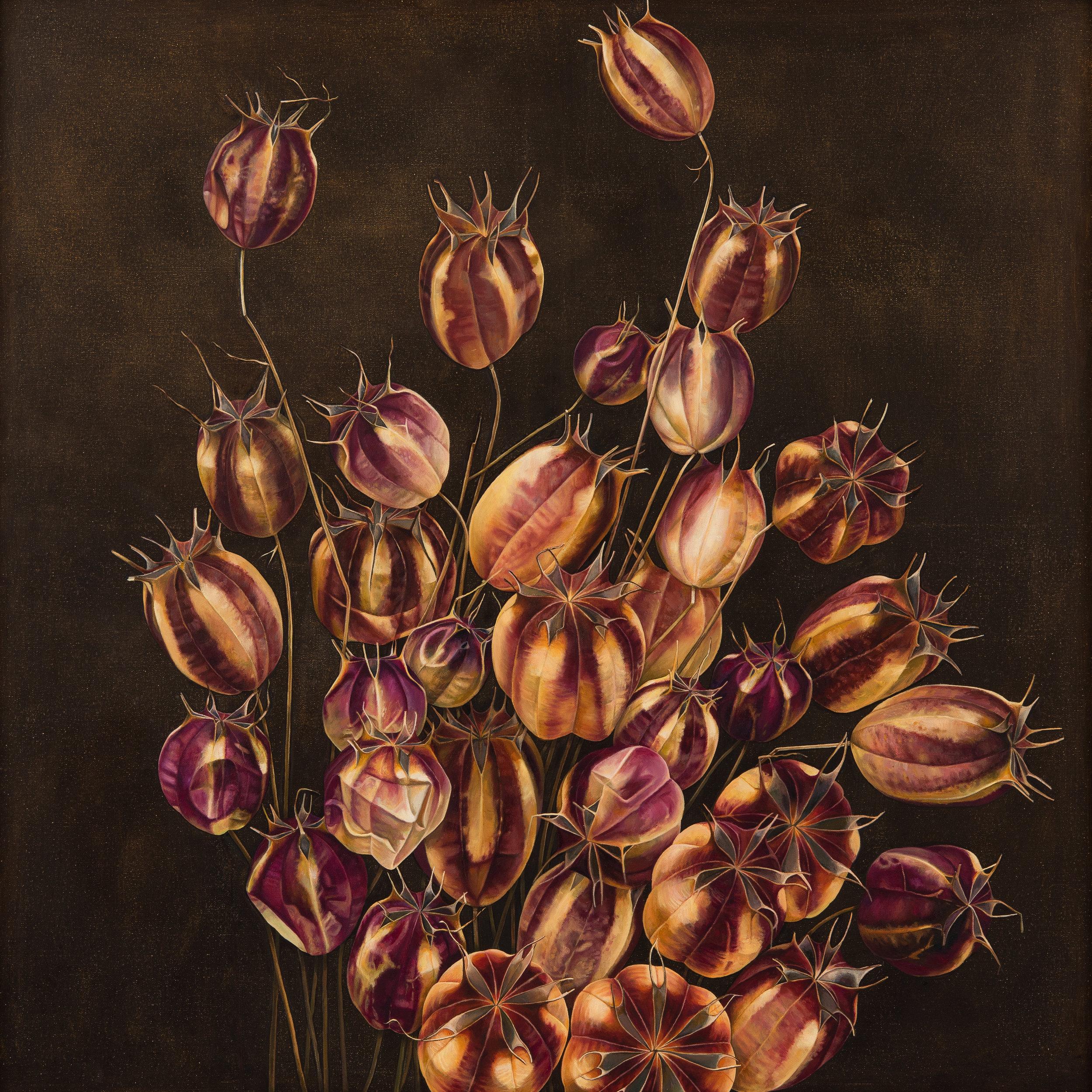 'Nigella 2', Oil on Canvas, 100 x 100cm