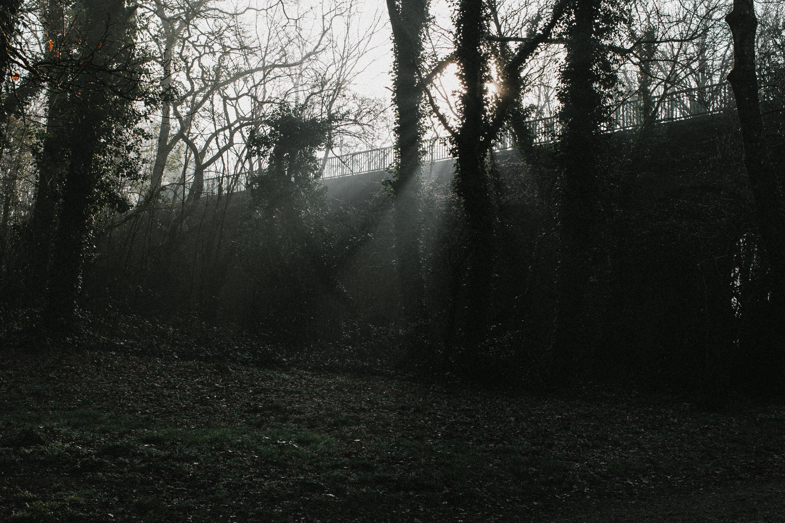 ancenis-3654.jpg