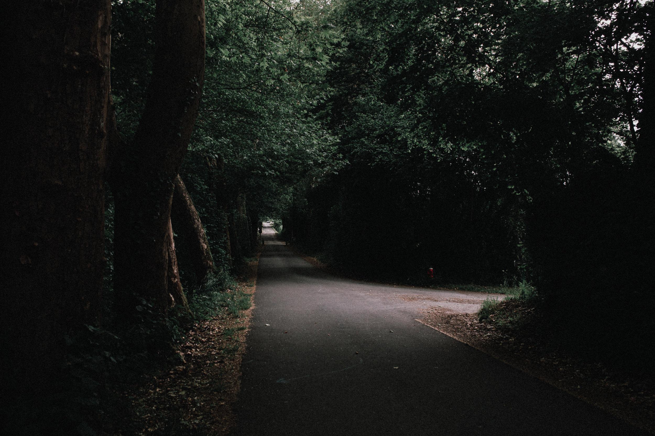 Jeu. 06 Juin 2019 - Balade dans la nature