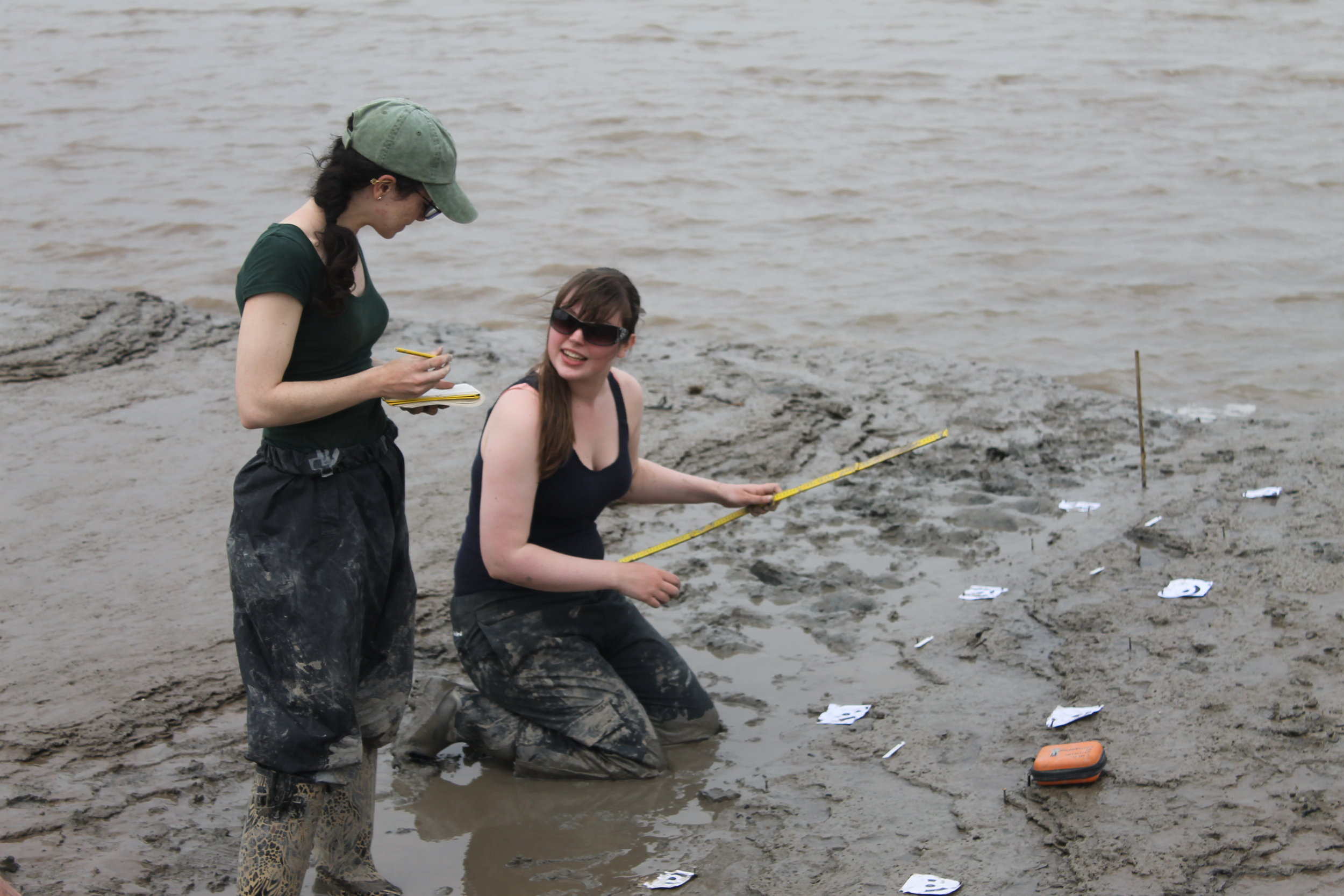 Archaeologists working on the foreshore, Goldcliff.