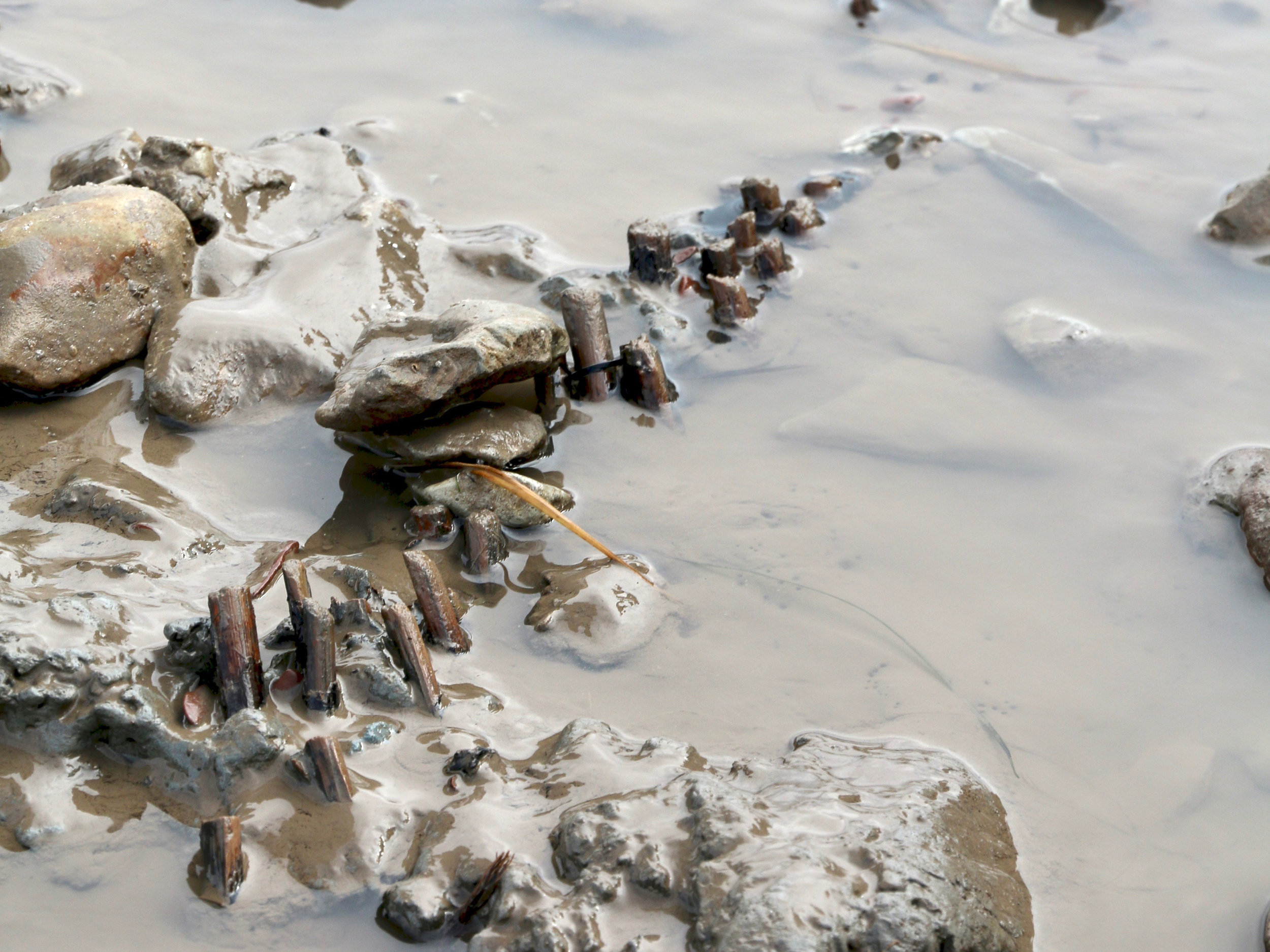 Remains of mesolithic fish trap, Goldcliff