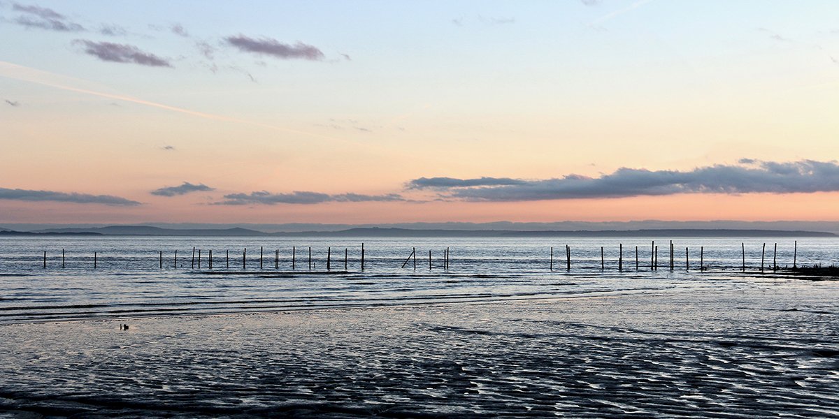 Winter sunset, Goldcliff (Chris Harris)