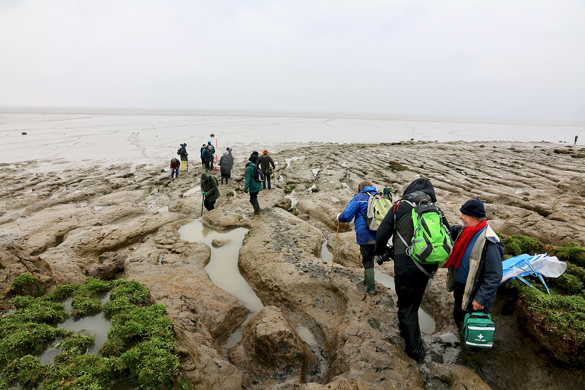 Climbing down on to the foreshore at low tide.