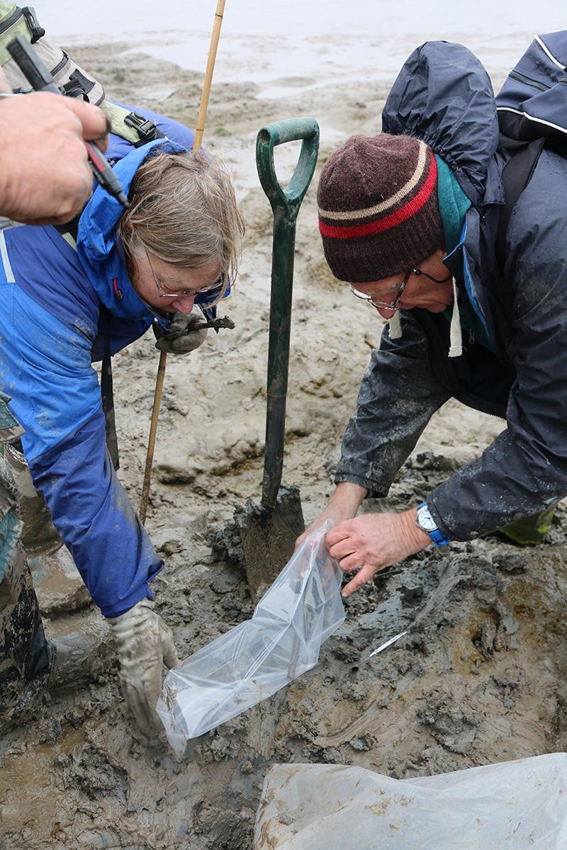 Dr Jennifer Foster (left) supervises the bagging of a find