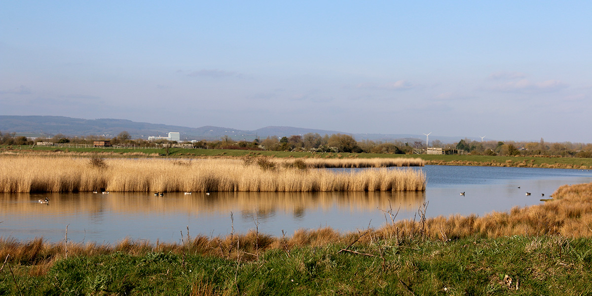 View across Prior's lagoon (Chris Harris)