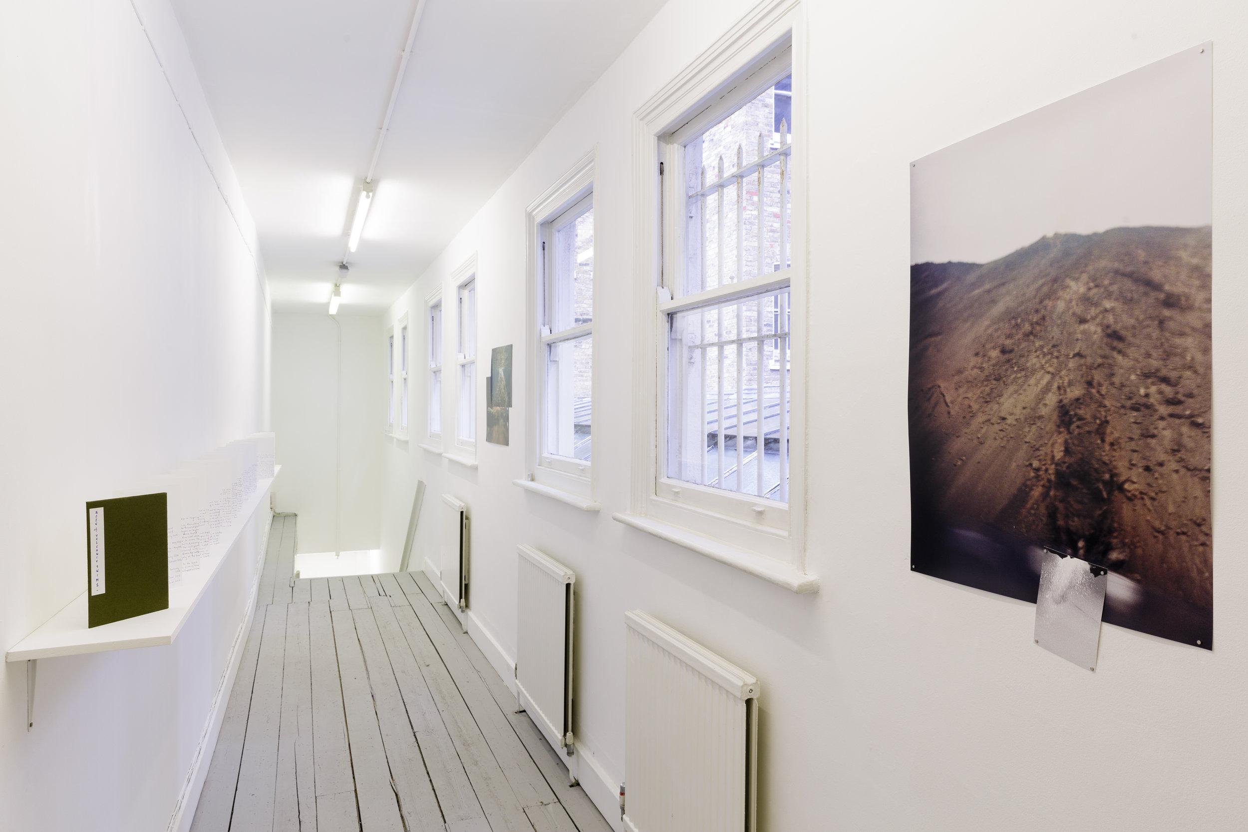 Installation view. Photo: Tim Bowditch.