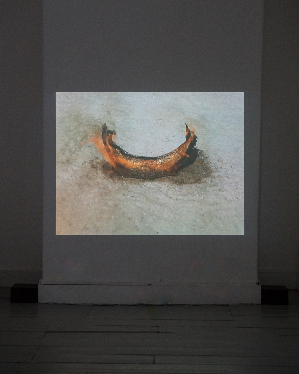 Tejal Shah, Between the Waves, 2012. Channel IV, Moon burning. Photo: Damian Griffiths. Image courtesy the artist, Project 88, Mumbai, and Barbara Gross Gallery, Munich