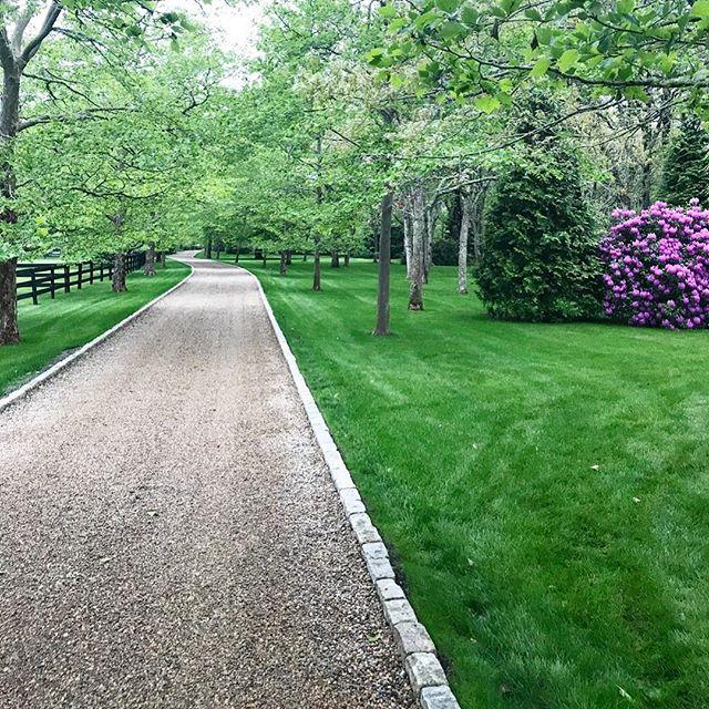 #lawnmaintenance #hydroseeding #lawncare #organiclawncare #teles #marthasvineyard #westtisbury #oakbluffs #chilmark #edgartown #paisagismo #greenlawn