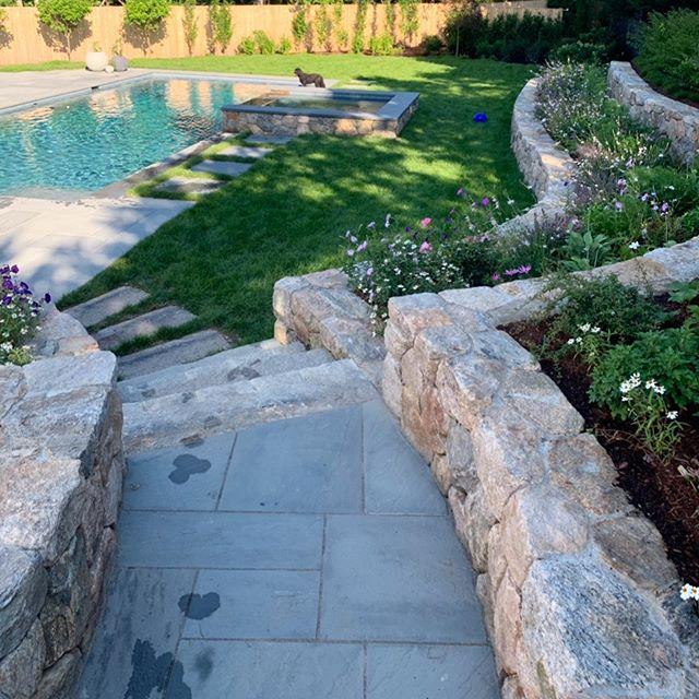 Great #poolproject #beforeandafter in #edgartown. #newpool #summerdays on #marthasvineyard. #landscapedesign #landscapeinstallation #hardscape