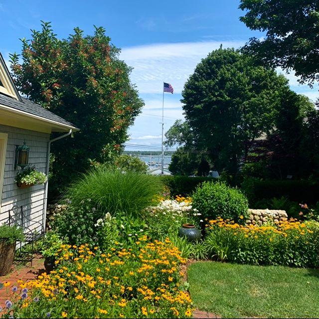 Colors of the Season #gardens #landscapemaintenance #marthasvineyard #vineyardhaven #edgartown #oakbluffs #americanflag #teles