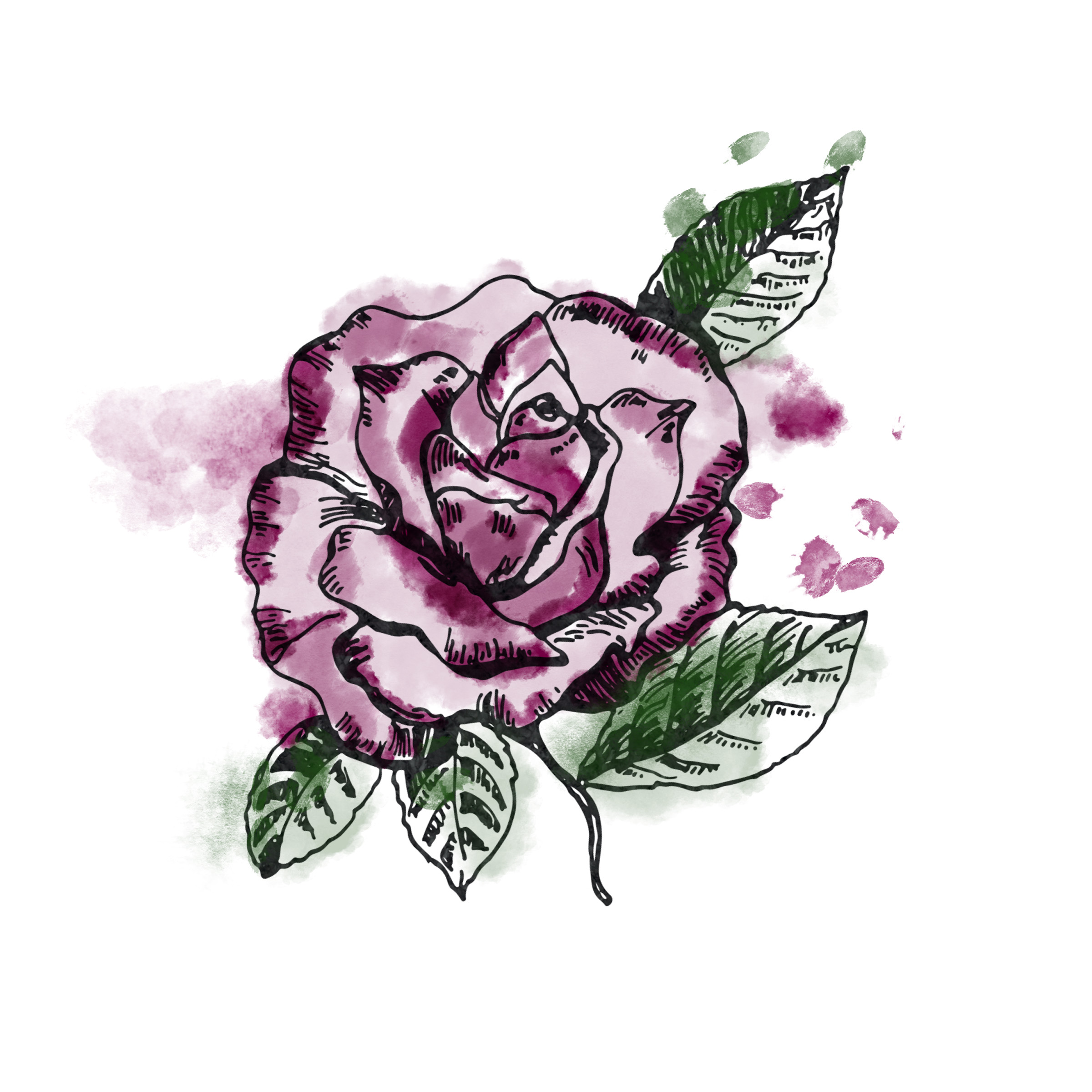 Rose_Colourtest.jpg