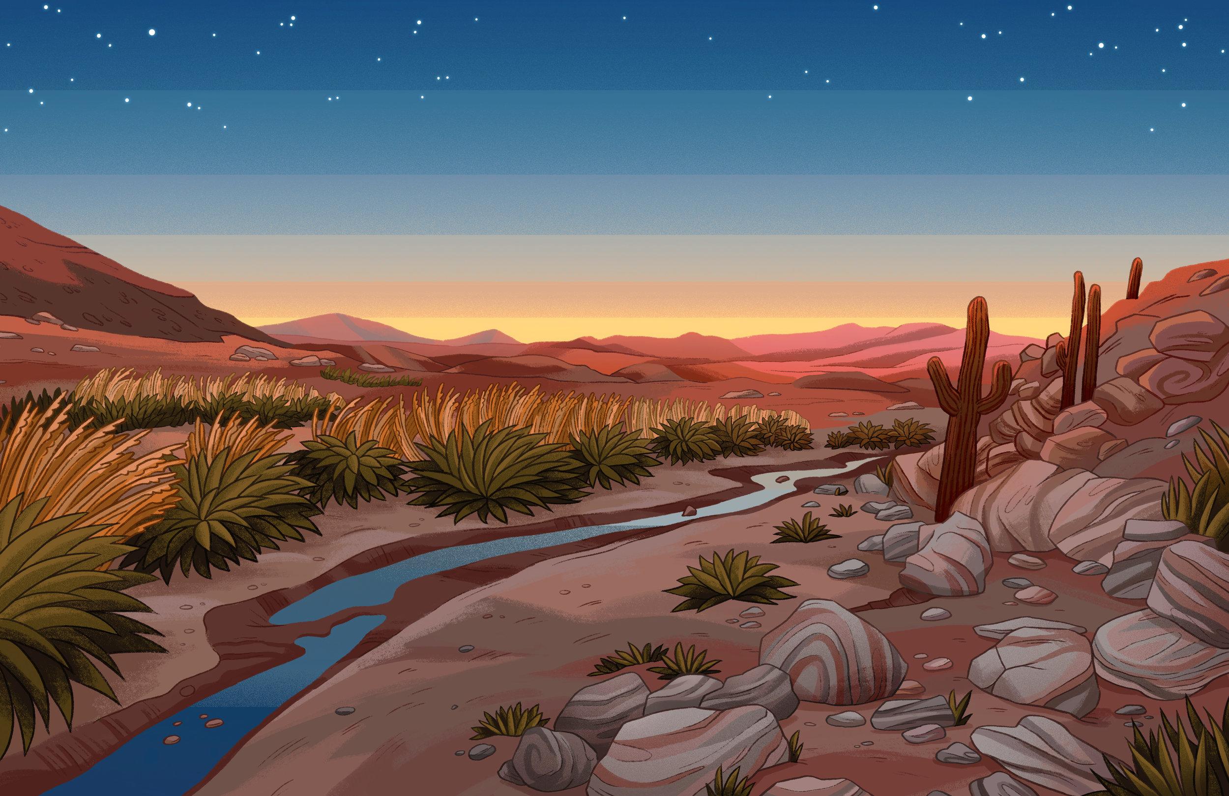 desert photo study.jpg
