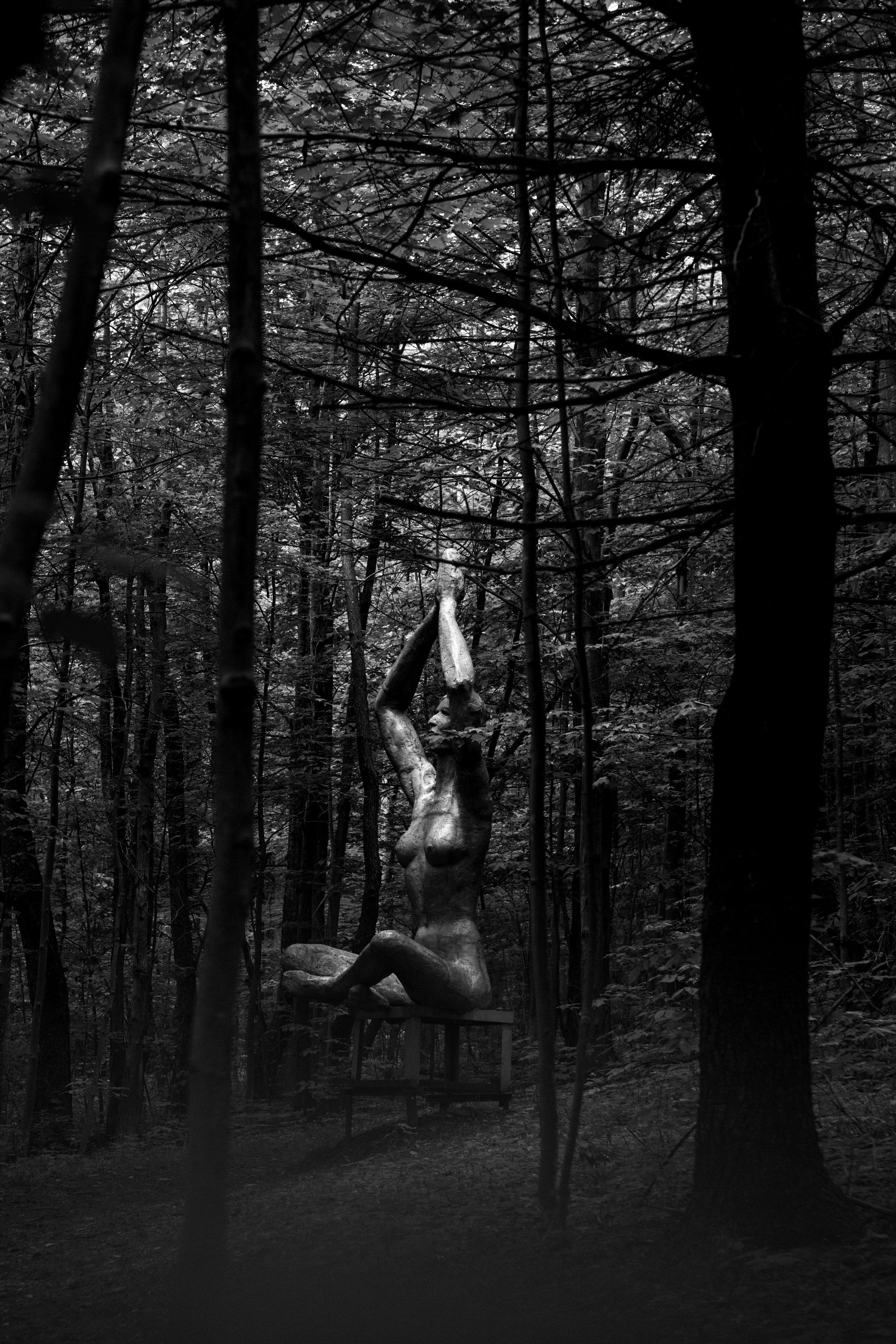 AKZPhotographySculptureparkWNYbuffaloNYPhotoimages19808.jpg