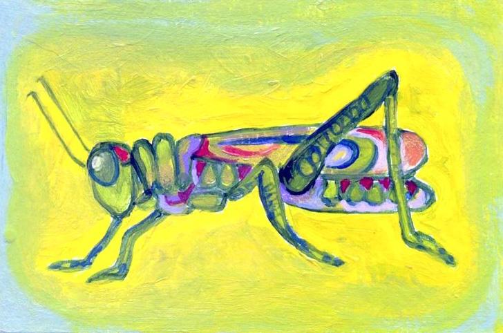 Friendly Grashopper