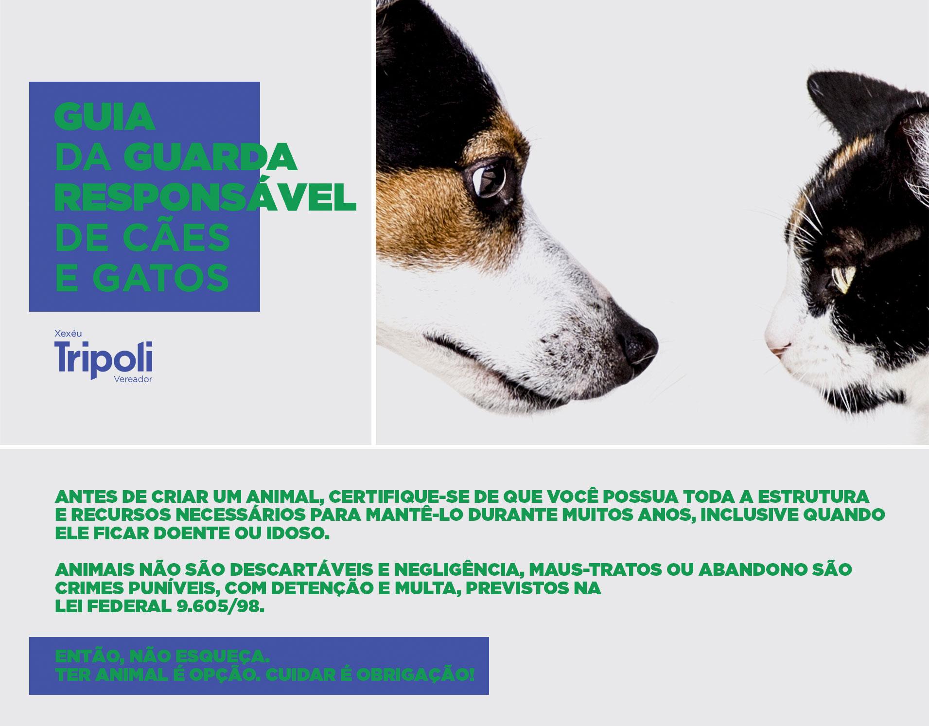 main-banner-webpage3.jpg
