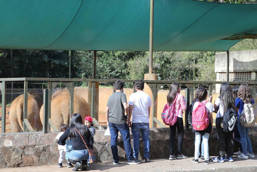 Visitantes apreciam animais no Zoo de São Paulo - 15.08.2019 - Rivaldo Gomes/Folhapress
