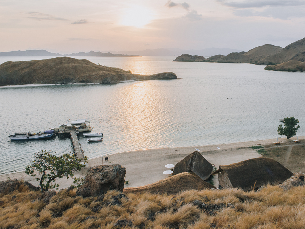 KOMODO, BEYOND THE DRAGONS: DIVING AND EMPTY BEACHES IN INDONESIA   The Guardian