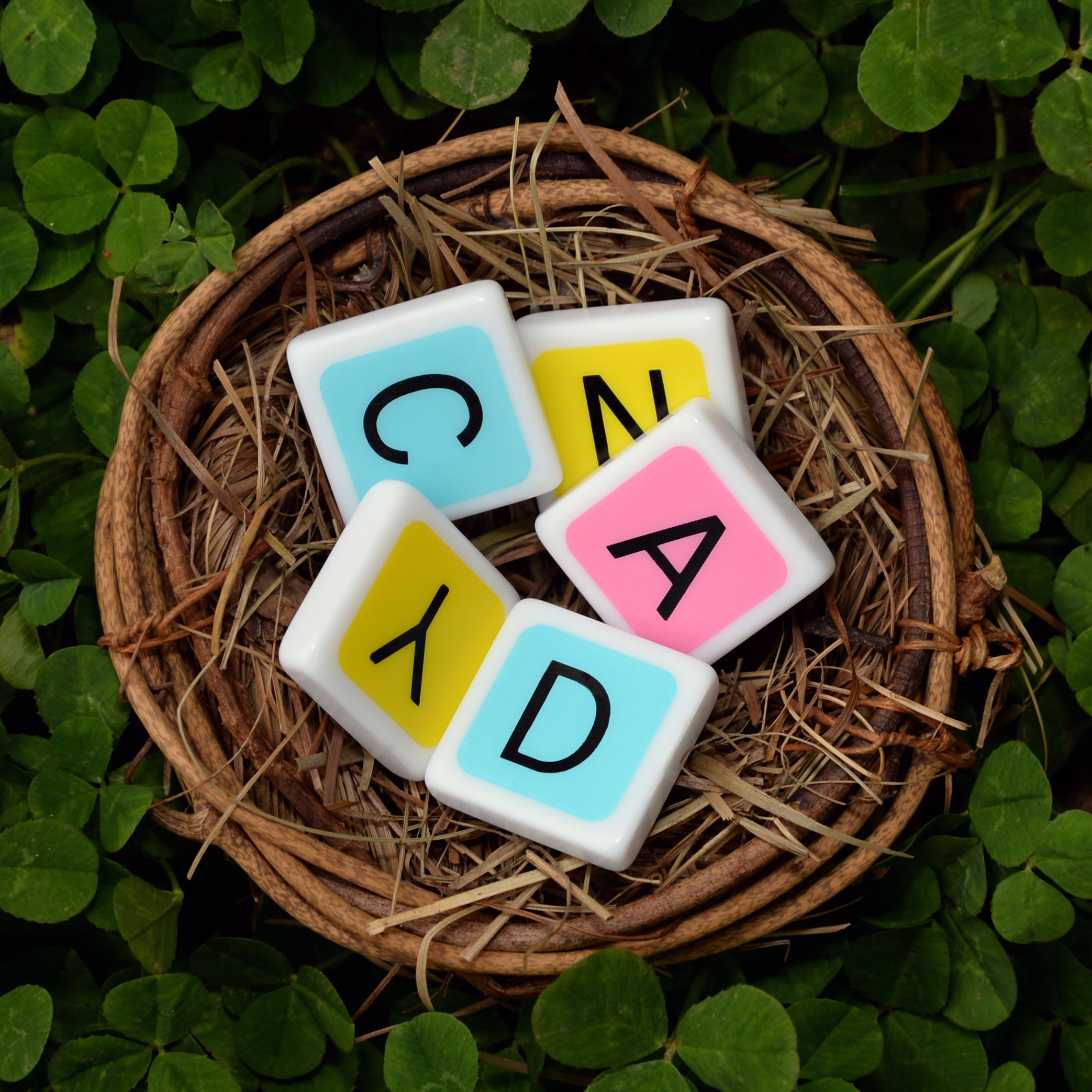 "Candygrams' letter tiles come in three different ""candy"" colors: pink, yellow, and blue. Word games are more fun in color!"
